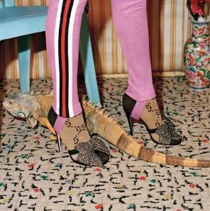 Gucci-Pre-Fall-2017-Campaign09